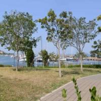 """I rifiuti tossico nocivi del """"Parco delle Vele"""""""