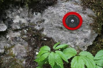 Trebiciano Grotta idrocarburi4